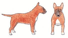 smut-illustration2
